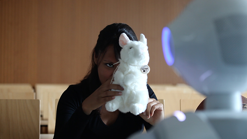 Object recognition: Selene Báez showing Pepper robot Leolani a plush rabbit.
